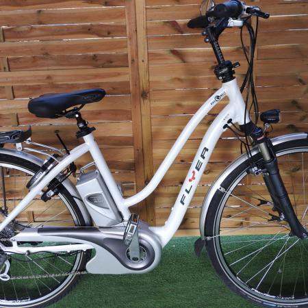 Rower elektryczny Flyer D 50 I inne rowery